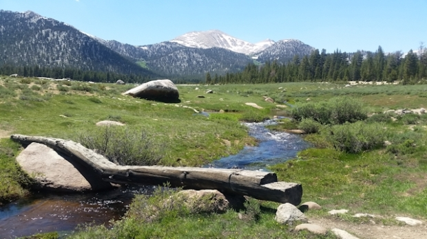 Horseshoe Meadows Loop June 2017